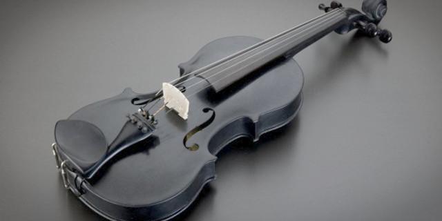 blackbird-violin-header